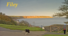 Click to go to Filey page