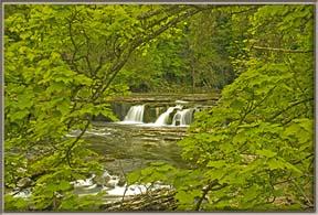 Aysgarth-Upper-Falls-PeepingFramed